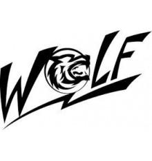 Диски Wolf